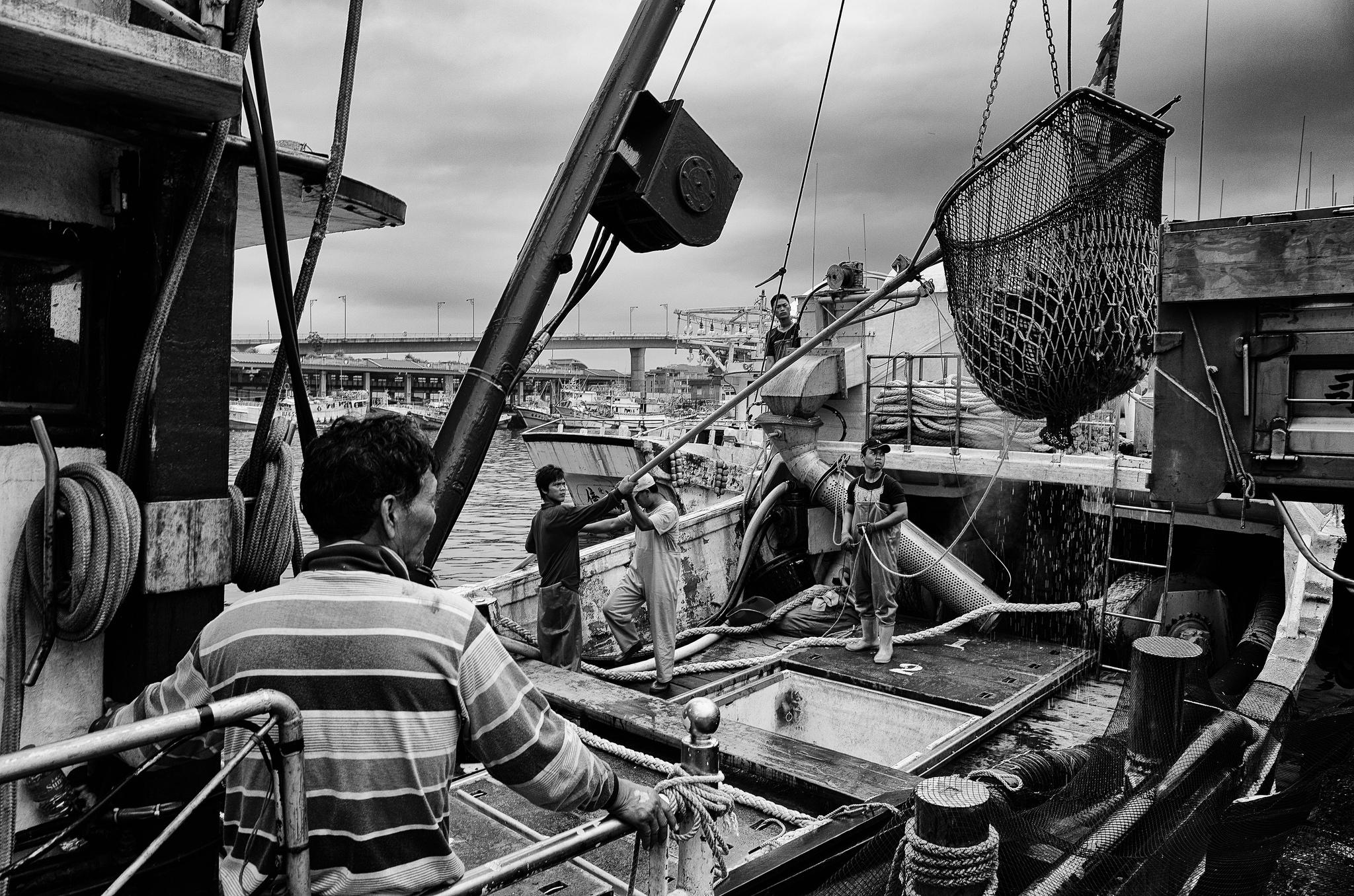 Barco pesquero. Foto por Jorge Gonzalez